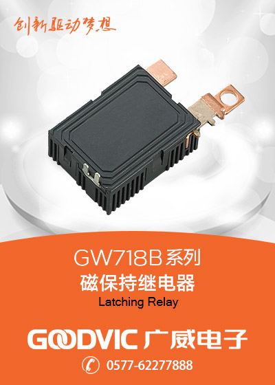 GW718B Series-Latching Relay