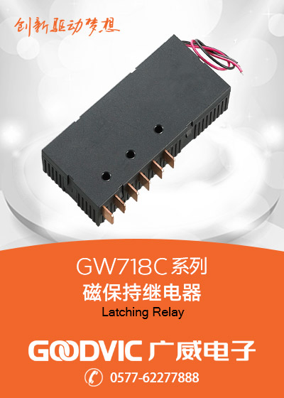 GW718C Series-Latching Relay