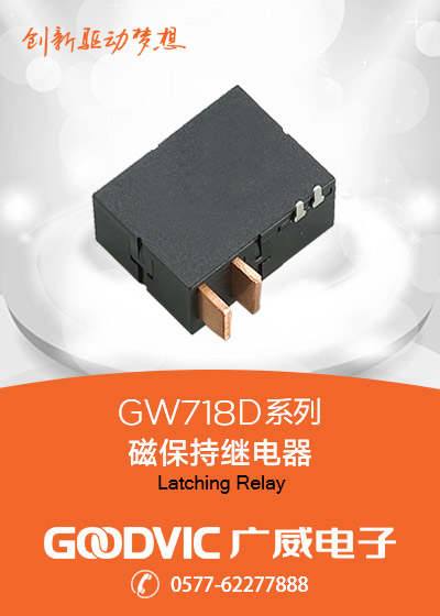 GW718D Series-Latching Relay