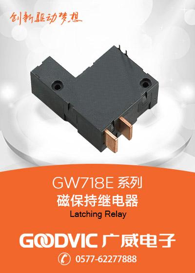 GW718E Series-Latching Relay