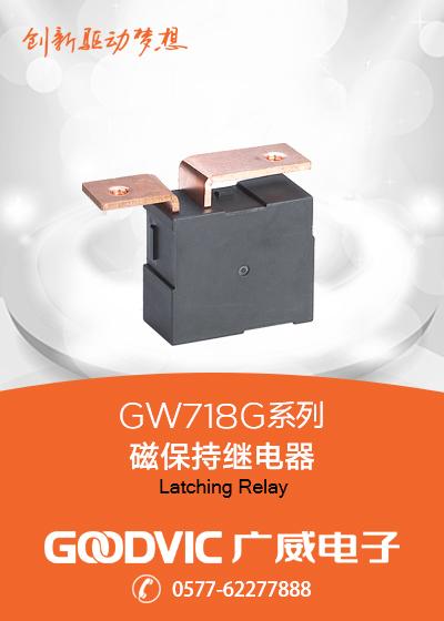 GW718G Series-Latching Relay