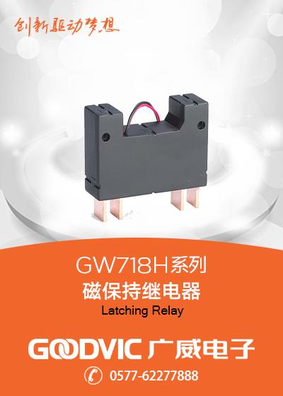 GW718H Series-Latching Relay